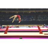 Jimnastik Denge Aleti FIG onaylı