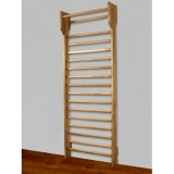 Jimnastik Duvar Merdiveni Parmaklıklı Barfiksli Tip